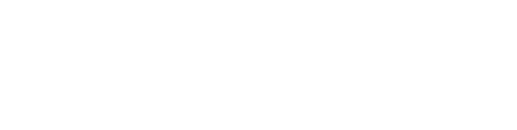 Fast Start Marketer Logo White
